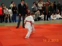 judo_20130216_sfb03