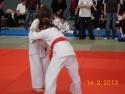 judo_20130216_sfb09