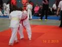 judo_20130216_sfb10
