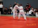 judo_20130216_sfb12