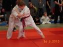 judo_20130216_sfb15