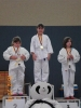judo_20130216_sfb17