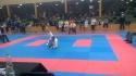 Lena Kick