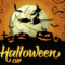 +++ Halloween Cup +++